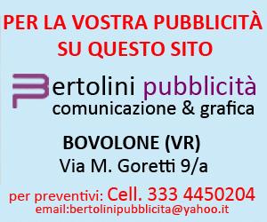 Bertolini Pubblicità